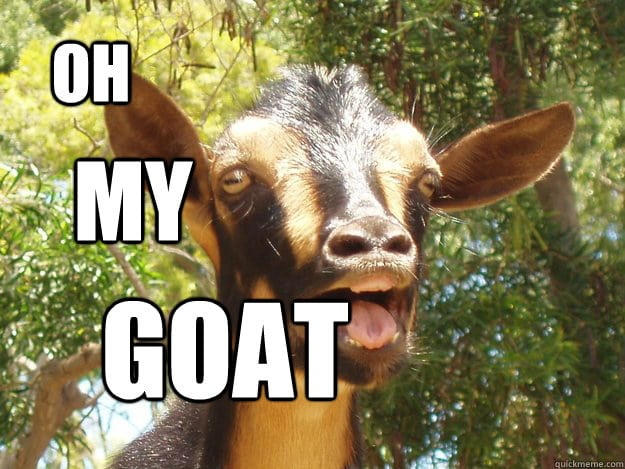 How Mtn. Goat gets Intel from the CBI Contact! Oh-my-goat