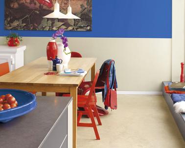 *Tessychou* [Sous pente: Chambre=11m² + Mezzannine=20m²] Avis P.4?? Peinture-cuisine-couleur-rouge-gris-et-bleu