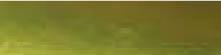 Краски-пасты для золочения Viva-Inka-Gold MR120491236gp