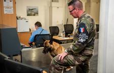 Afghanistan : Focus sur les gendarmes français à Kaboul 2014ecpa071z132_006_article_demi_colonne