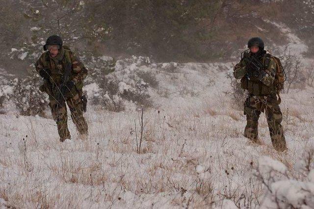 armée de terre 2-exercice-etoile-verte-2009-du-groupement-de-commando-de-montagne-gcm
