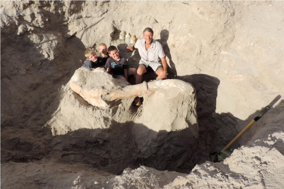 Un enfant découvre un fossile vieux de 1,2 million d'années alors qu'il se promenait avec sa famille ! Par Timothé G. Capture%20d%E2%80%99e%CC%81cran%202017-07-20%20a%CC%80%2011.12.26