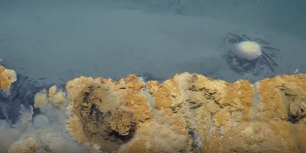 Découvert par des scientifiques, ce lac sous-marin est fatal pour toutes les espèces qui s'y aventurent... 2016-11-04%20%286%29