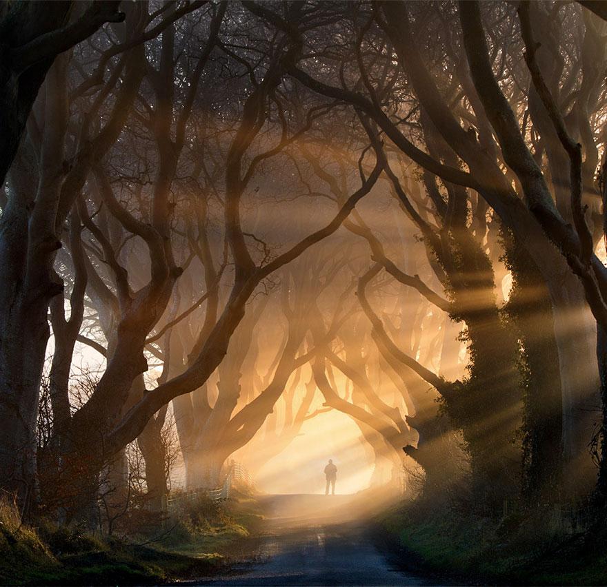 C'est de toute beauté : sites et lieux magnifiques de notre monde. Dark