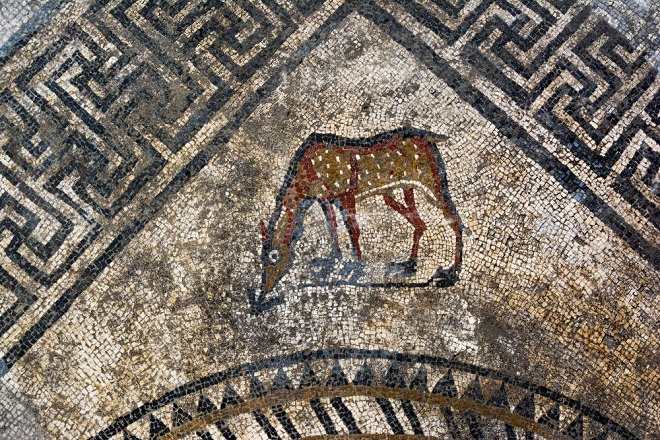 Dans le Gard, des vestiges d'une ancienne cité romaine ont été découverts...Par Jérémy B.                                 Content-1491318202-dsc5855