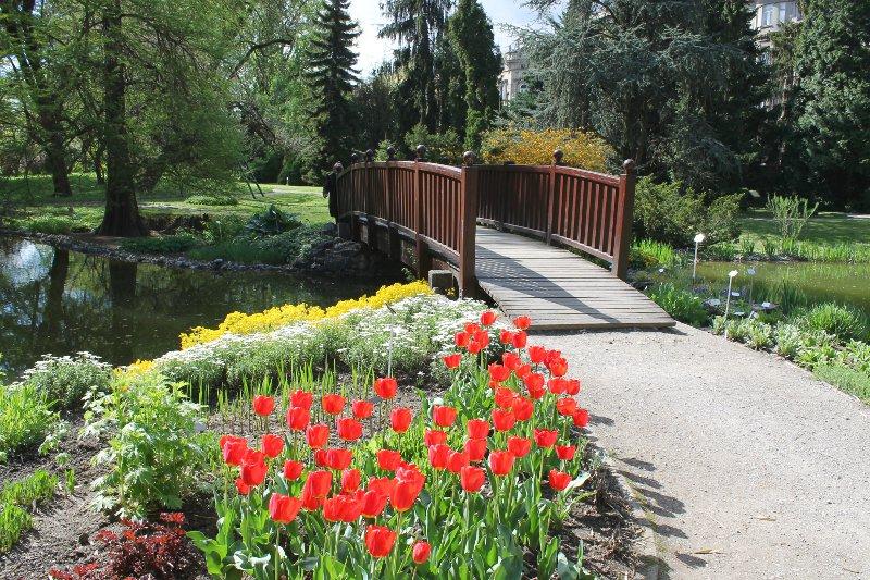 Botanički vrt Zagreb BotanickiVrt-14b