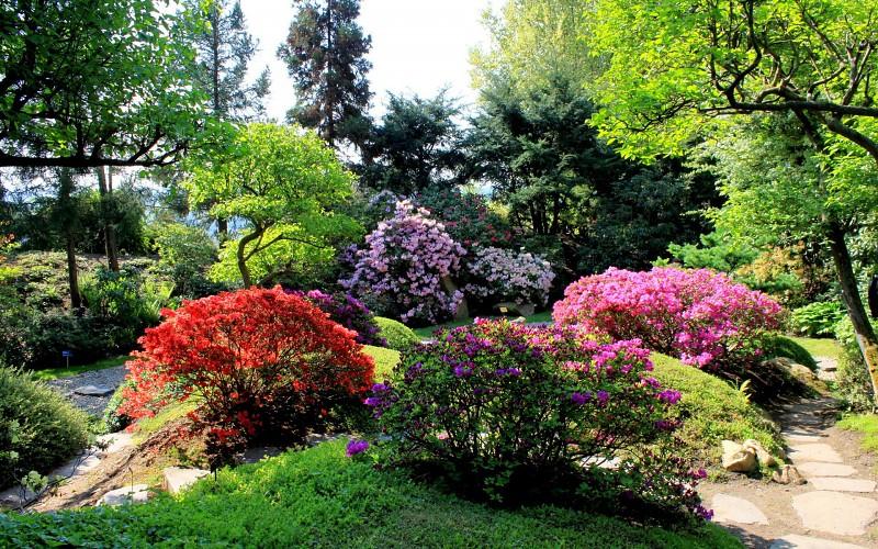 Parkovi i vrtovi Nature-landscapes-garden-sidewalk-path-roads-trees-color-contrast-grass-plants-sky-blossoms-background-195575