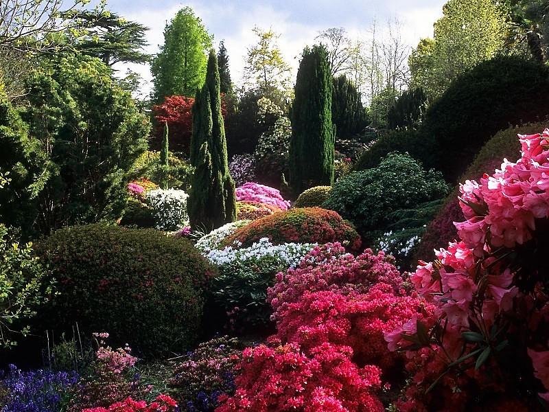 Parkovi i vrtovi Rock-garden-background-49910
