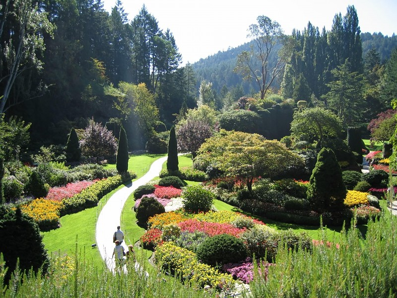 Parkovi i vrtovi Come-walk-through-my-garden-images-28667