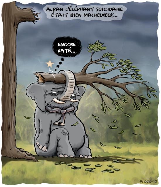 L'humour noir - Page 2 Elephant550