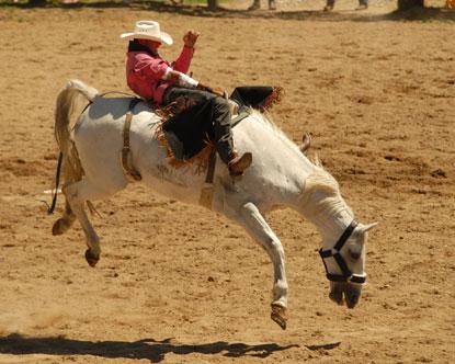 mort de l'égo et joie Dixie-national-rodeo-and-livestock-show