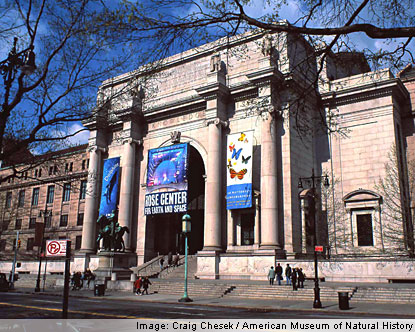 Part 14 / 10 American-museum-of-natural-history