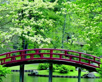 Baste-Vrtovi Memphis-botanic-garden