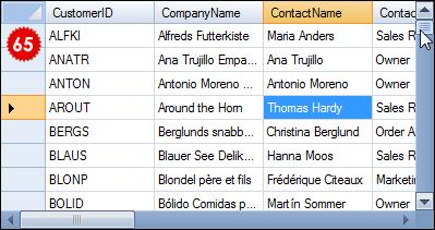 تعلم كيفية استخدام المكتبة DotNetBar لإظافة ثيم Office2007 بكل أدواته لمشروعات vb.net DataGridViewXHome