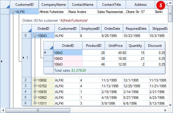 تعلم كيفية استخدام المكتبة DotNetBar لإظافة ثيم Office2007 بكل أدواته لمشروعات vb.net HomeSuperGridDataControl