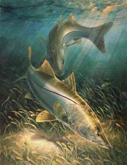 Impresionantes Obras de Arte en Pesca Deportiva TwoSnook_small