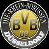 Logo RheinBorussen Logodruck100100