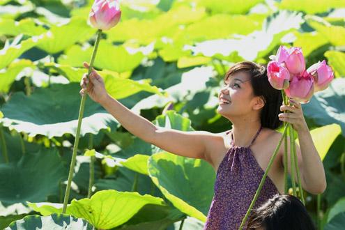chúc mừng sinh nhật lephuong_qb ThieuNuHoaSen5