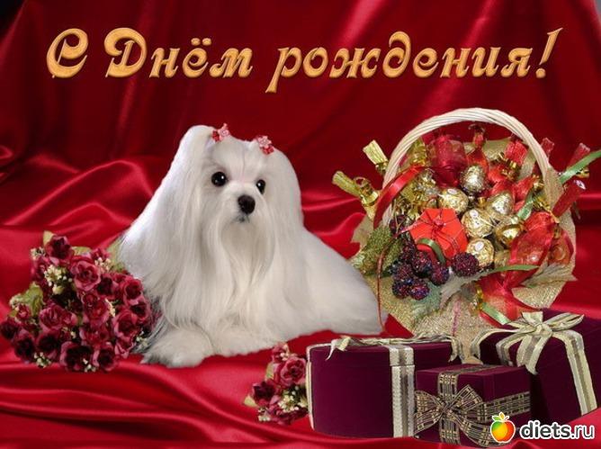 Denyellу поздравляем 15 июля с Днем рождения - Страница 2 1120786_70058-550x500