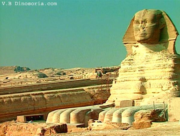 Quel âge le Sphynx a-t-il Vvraiment? Sphinx-14