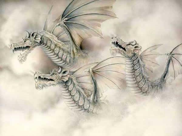 *Le dragon est-on bien sûr qu'il s'agit d'un mythe? - Page 3 Dragon_010