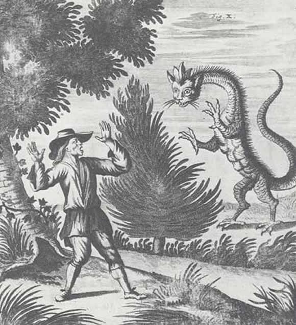 *Le dragon est-on bien sûr qu'il s'agit d'un mythe? - Page 3 Dragon_07