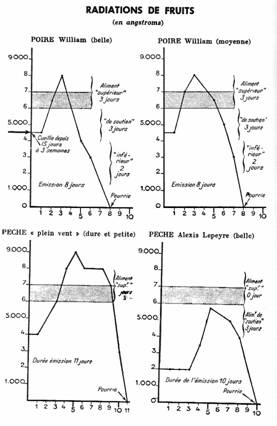 Radiazioni degli alimenti: onde umane e salute Vibraz1
