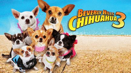 [Disney] Le Chihuahua de Beverly Hills 3 (2012) Chihuahua3.1