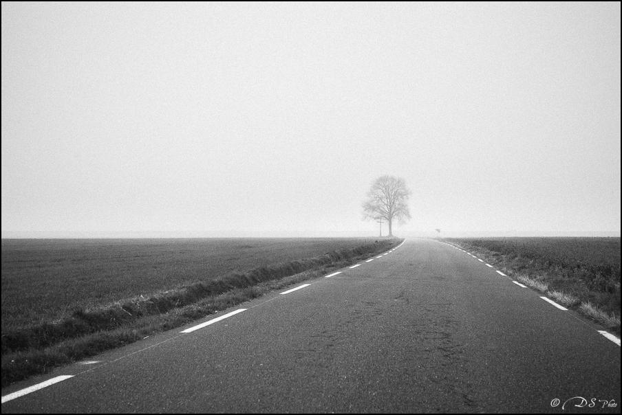 Sortir du brouillard... 20150322102717-e43782ae