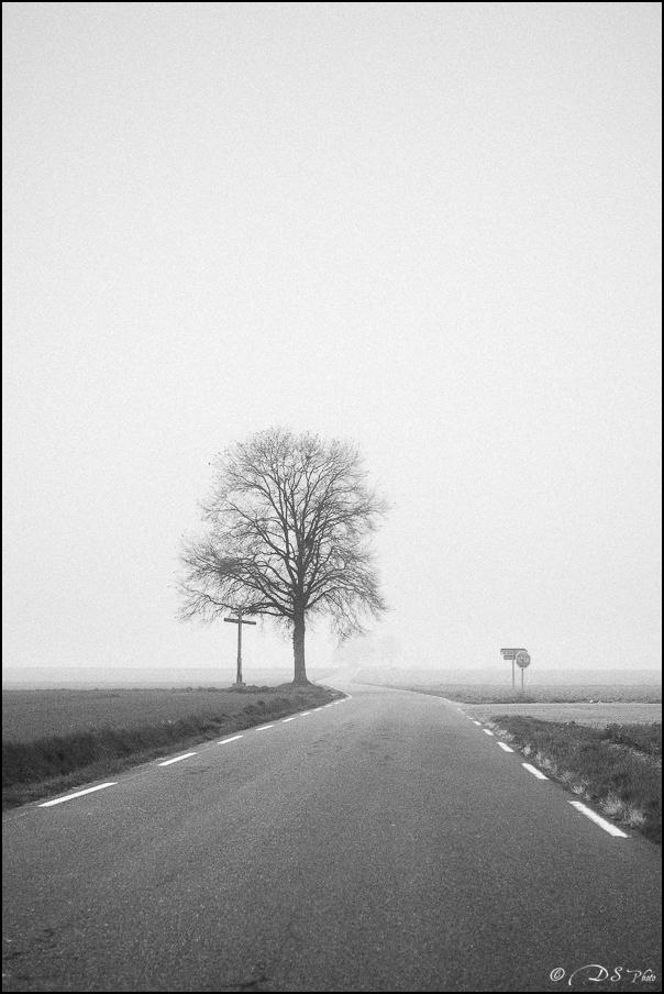 Sortir du brouillard... 20150322102721-19cfd7f6