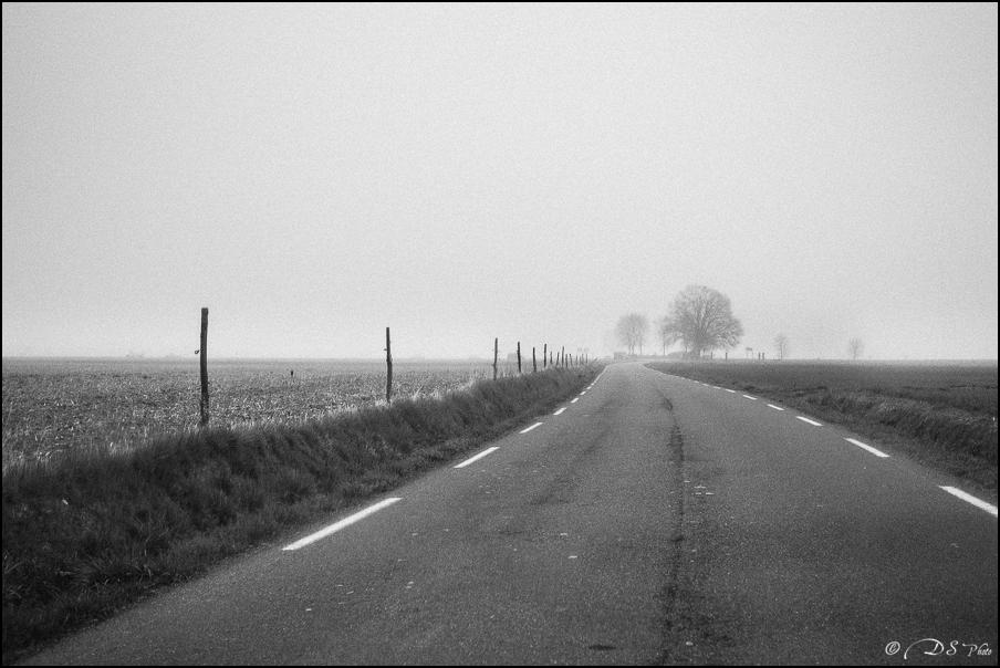 Sortir du brouillard... 20150322102725-a9db9273
