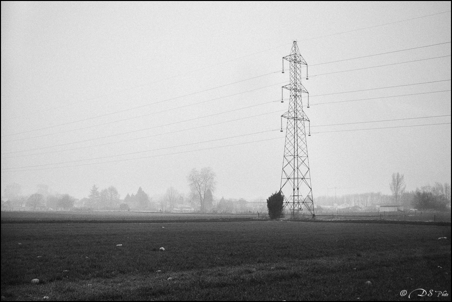 Sortir du brouillard... 20150322102733-e7e46487