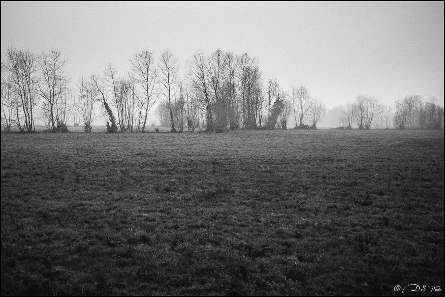 Sortir du brouillard... 20150322102742-ae260d94