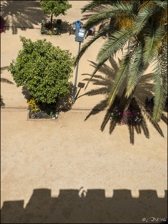 [Le Don Andalou] Road-Trip Etape 2: Cordoue (Part 2) 20180621171011-7ca8a0e3
