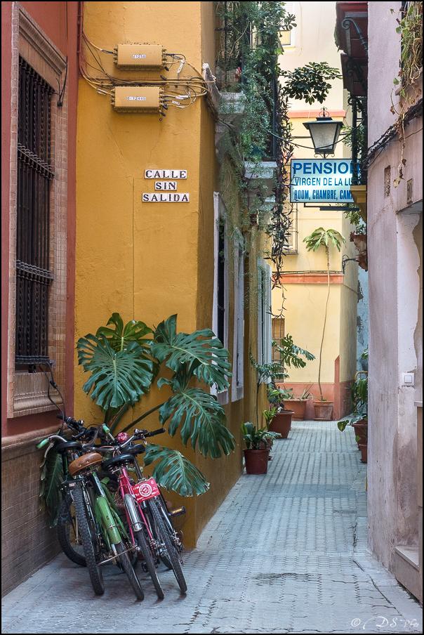 [Le Don Andalou] Road-Trip Etape 5 : Séville (Part 5) 20180806111130-0fefaabb