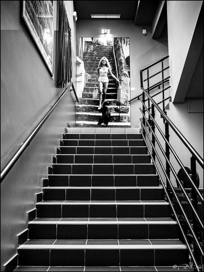 J'ai croisé BB dans l'escalier... 20190801105229-75162967
