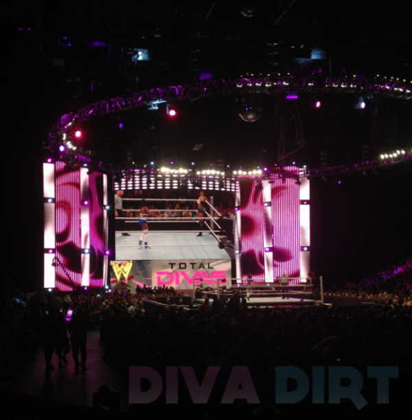 WWE Divas Spoilers *all diva spoilers go in here or they will be deleted* - Page 12 Totaldivastron-e1370390978417