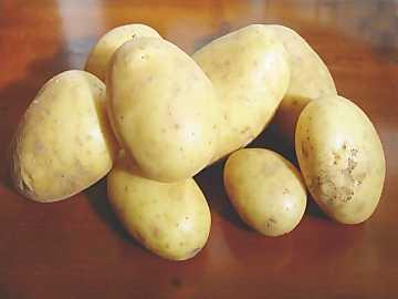 Patate mille usi Patate