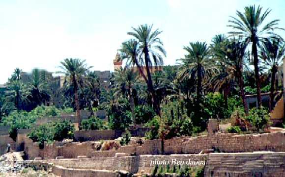 اليكم صورمختلفه لمدينه بوسعاده مسقط راسي Bousaada6