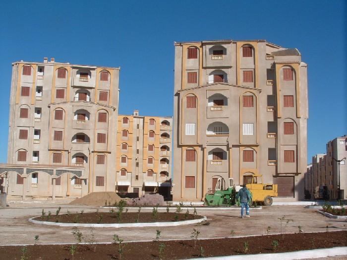 ولاية عين تموشنت الساحرة Photo%20123%20035