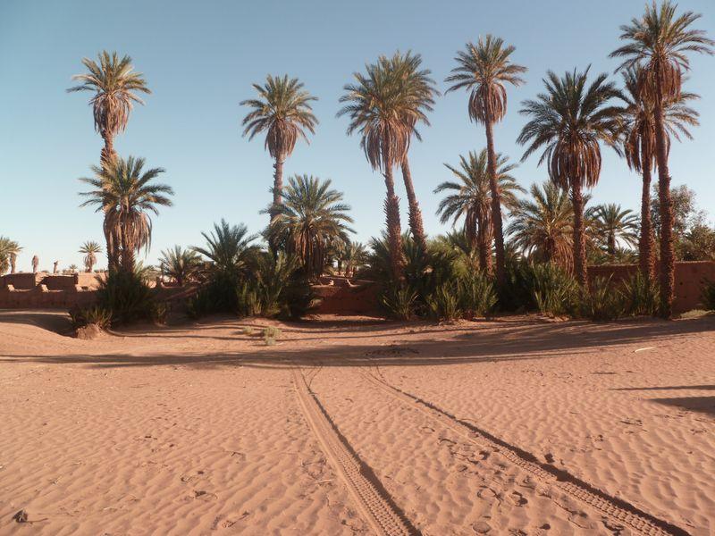 [Maroc Camp/Dernières nouvelles] Mon nouveau camping à Mhamid Esprit Désert P1010566_1