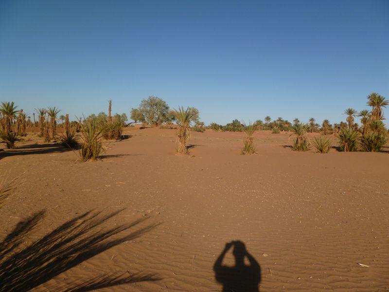 [Maroc Camp/Dernières nouvelles] Mon nouveau camping à Mhamid Esprit Désert P1010568_1