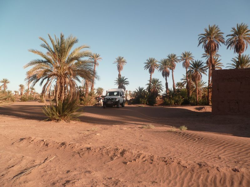 [Maroc Camp/Dernières nouvelles] Mon nouveau camping à Mhamid Esprit Désert P1010578_1