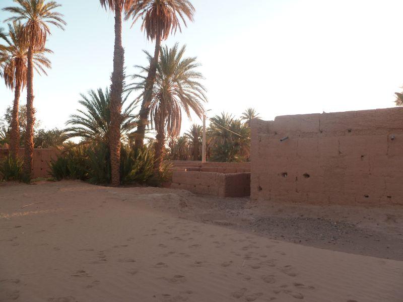 [Maroc Camp/Dernières nouvelles] Mon nouveau camping à Mhamid Esprit Désert P1010584_1