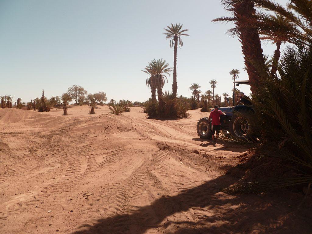 [Maroc Camp/Dernières nouvelles] Mon nouveau camping à Mhamid Esprit Désert - Page 3 P1010717