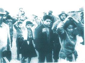 La Guerre d'Algérie en images Algerie-8-5-1945