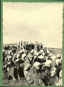 La Guerre d'Algérie en images Apres-massacres-arrestations