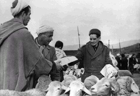 La Guerre d'Algérie en images Tract_oui_ind_tizi