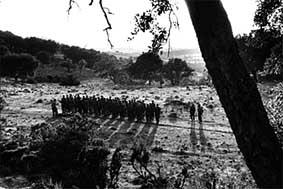 La Guerre d'Algérie en images Aln20