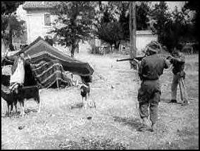 La Guerre d'Algérie en images Guelma-setif-massacre1